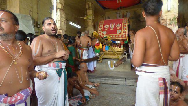 Thoopul  Swami desikan Thirunakshatra Utsavam day 6 Morning 2015 38