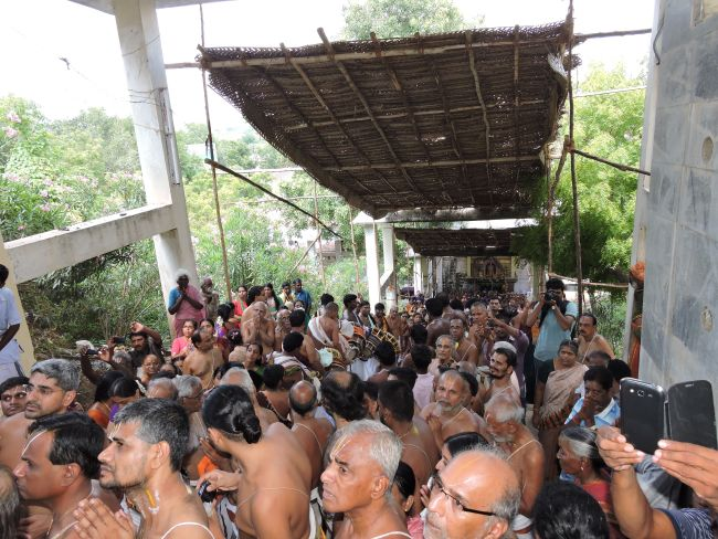 resized_thiruvanthipuram swami desikan thirunatchathira  padi utsavam 24th sep 15 -  (23)