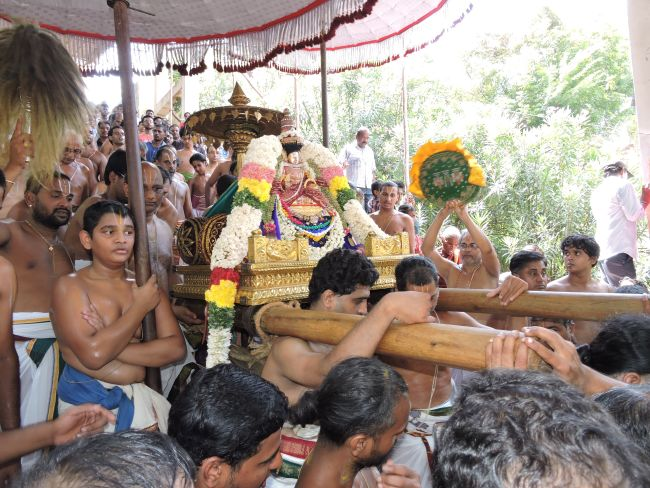 resized_thiruvanthipuram swami desikan thirunatchathira  padi utsavam 24th sep 15 -  (33)