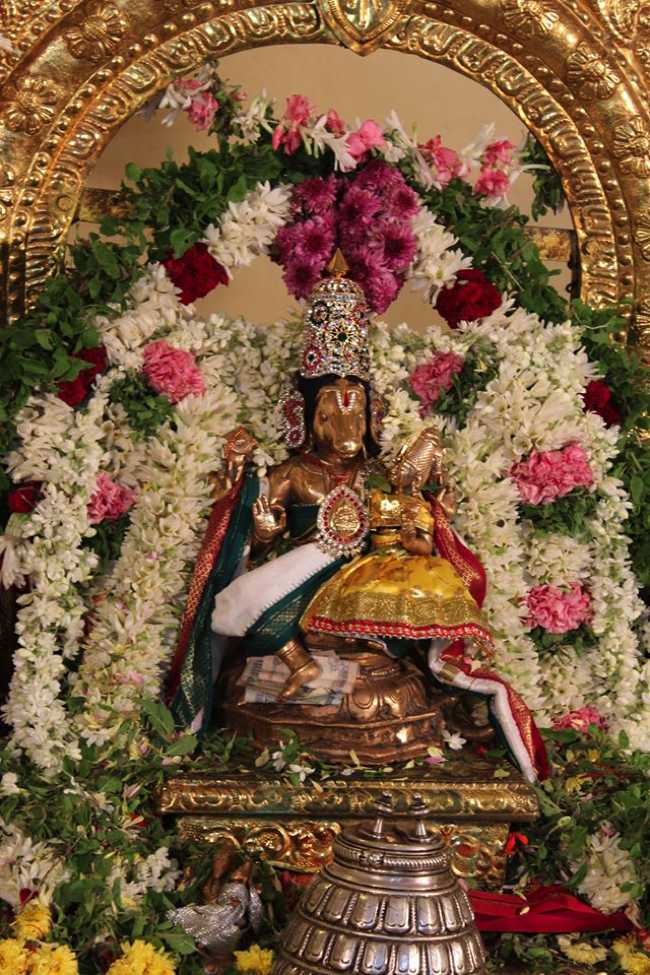 Pondicherry-Sri-Lakshmi-Hayagreeva-Perumal17