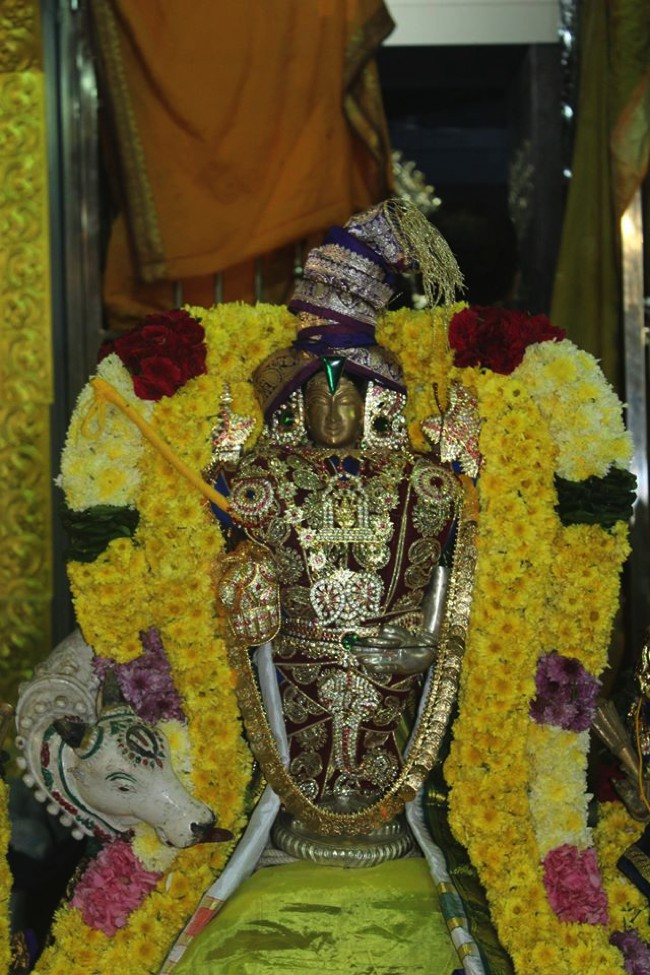 Pondicherry-Muthiyalpet-Sri-Srinivasa-Perumal_20