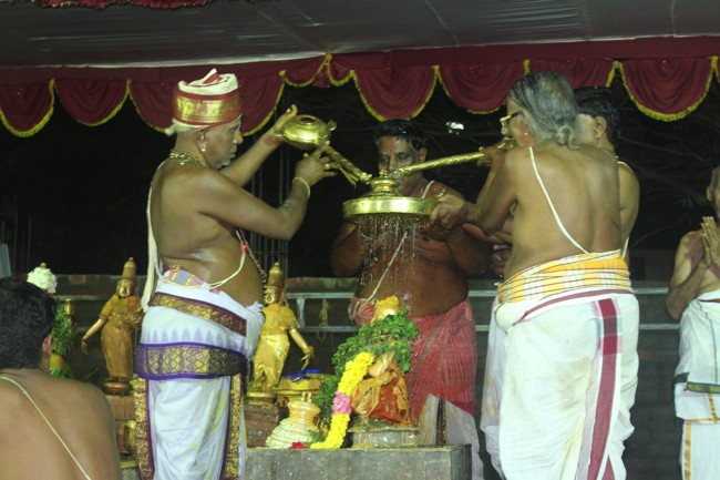 Pondicherry-Muthiyalpet-Sri-Srinivasa-Perumal_22