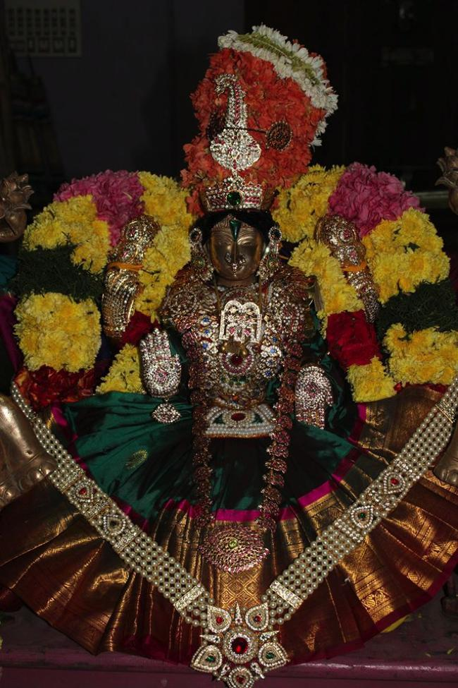 Pondicherry-Sri-Srinivasa-Perumal_11