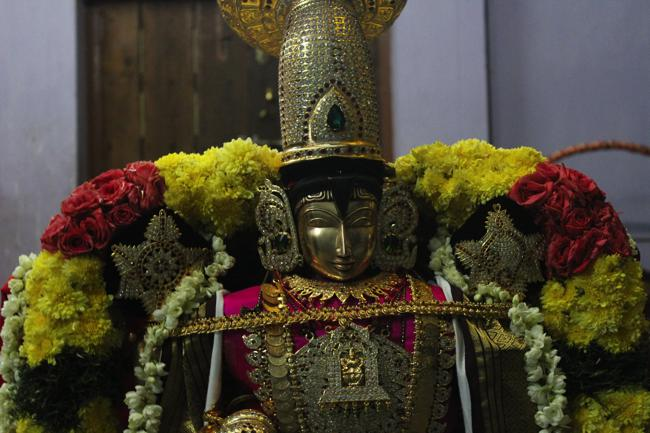 Pondicherry-Sri-Srinivasa-Perumal_12