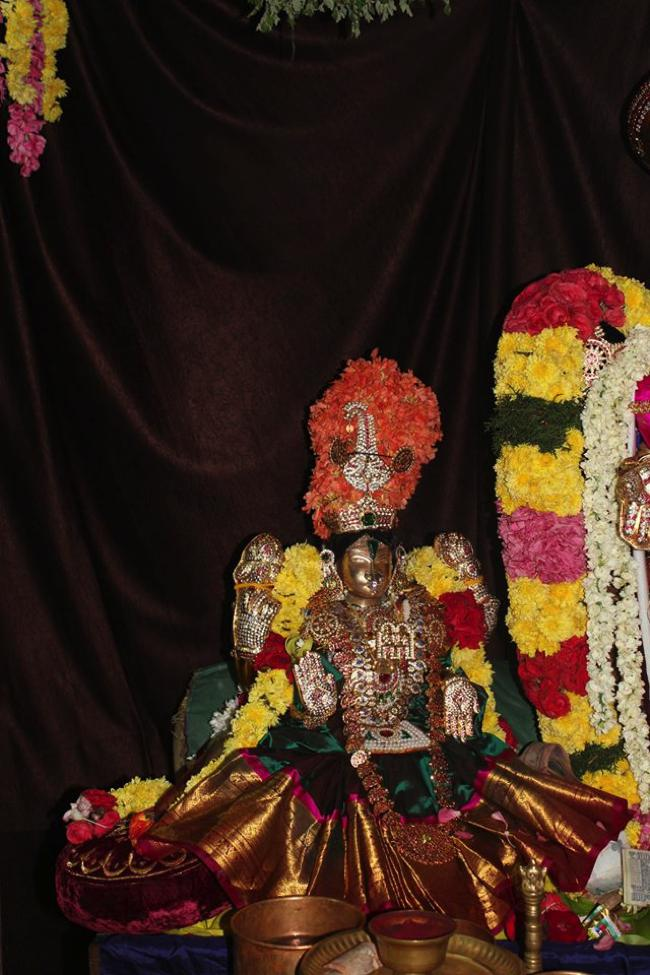 Pondicherry-Sri-Srinivasa-Perumal_13