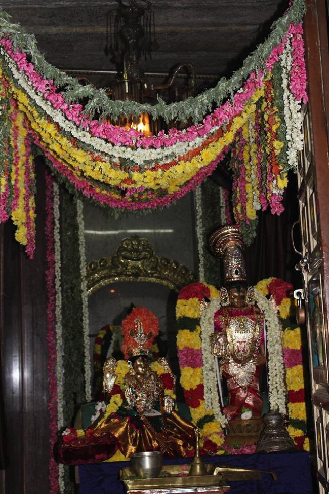 Pondicherry-Sri-Srinivasa-Perumal_15