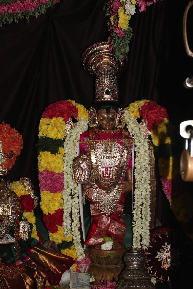 Pondicherry-Sri-Srinivasa-Perumal_16