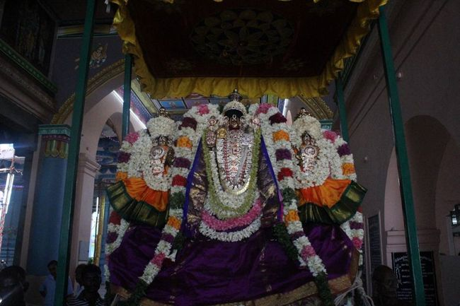 Pondicherry-Sri-Varadaraja-Perumal6