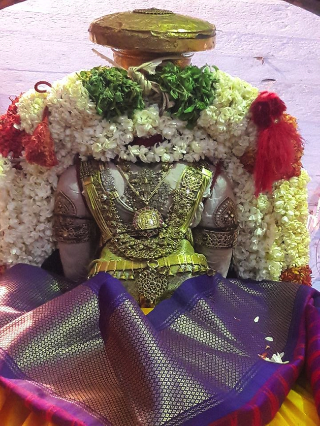 Sriperumbudur_Ramanuja_Thirunakshathiram_Day7_Morning_08