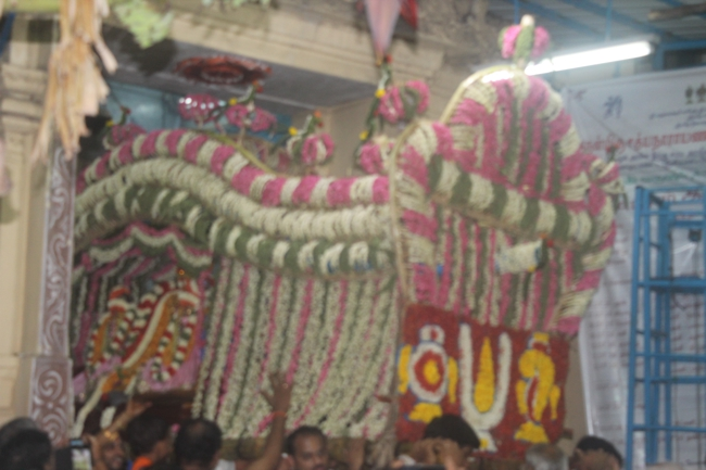 West_Mambalam_Sri_Sathyanarayana_Perumal_Temple_Day10_Evening_01
