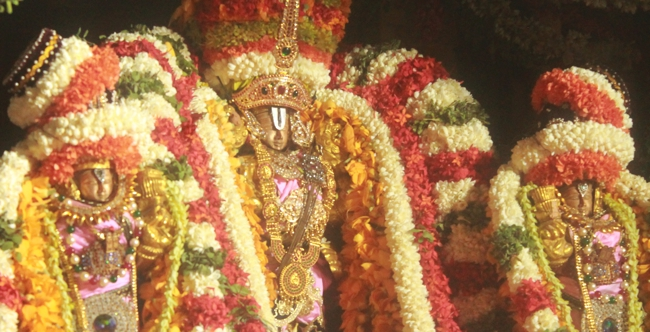 West_Mambalam_Sri_Sathyanarayana_Perumal_Temple_Day10_Evening_28