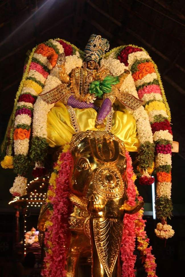 pondicherry-sri-hayagreevan-sannadhi-brahmotsavam-day-6-2016004