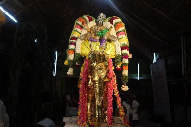 pondicherry-sri-hayagreevan-sannadhi-brahmotsavam-day-6-2016006