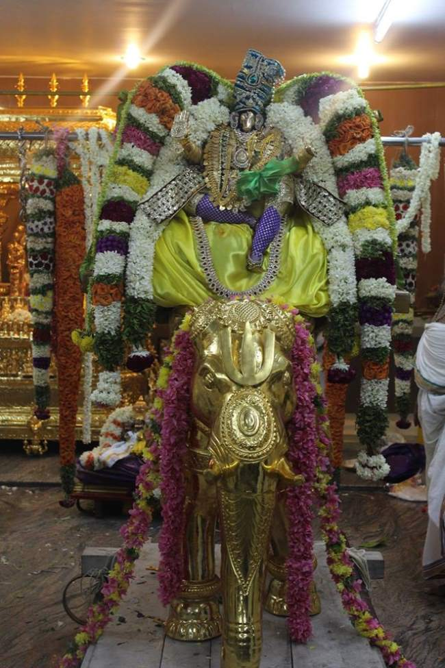 pondicherry-sri-hayagreevan-sannadhi-brahmotsavam-day-6-2016009