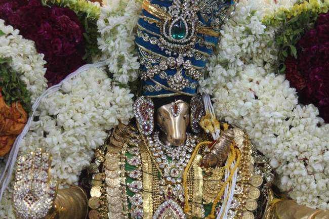 pondicherry-sri-hayagreevan-sannadhi-brahmotsavam-day-6-2016011