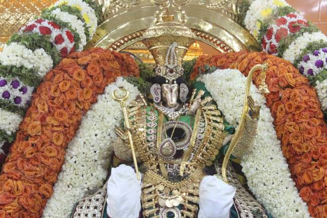 pondicherry-sri-hayagreevar-sannadhi-brahmotsavam-day-5-2016001