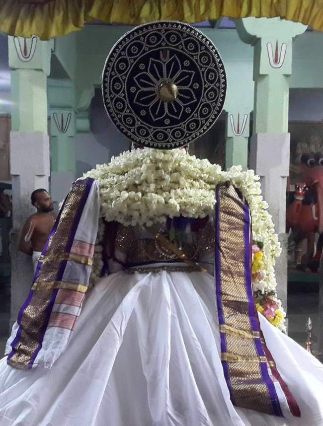 thoopul-swami-desikan-thirunakshatra-utsavam-day-3-evening-2016003