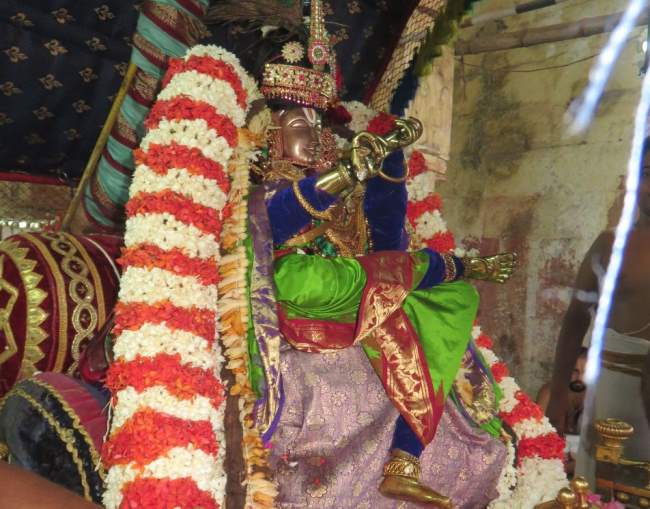 thoopul-swami-desikan-thirunakshatra-utsavam-day-3-morning-2016009