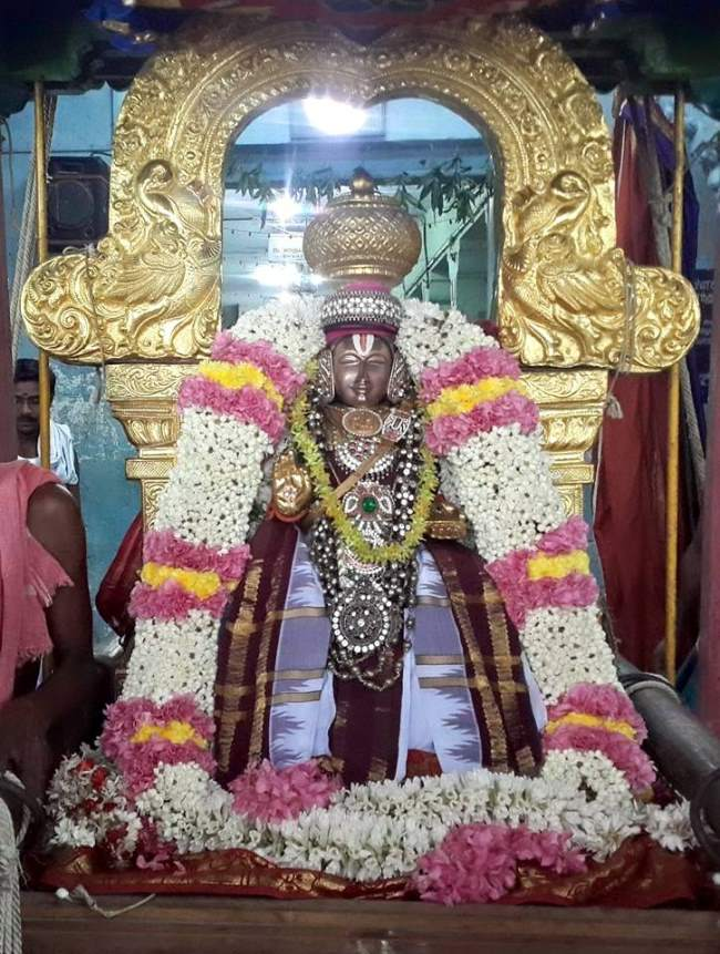 thoopul-swami-desikan-evening-purappadu-day-2-2016004