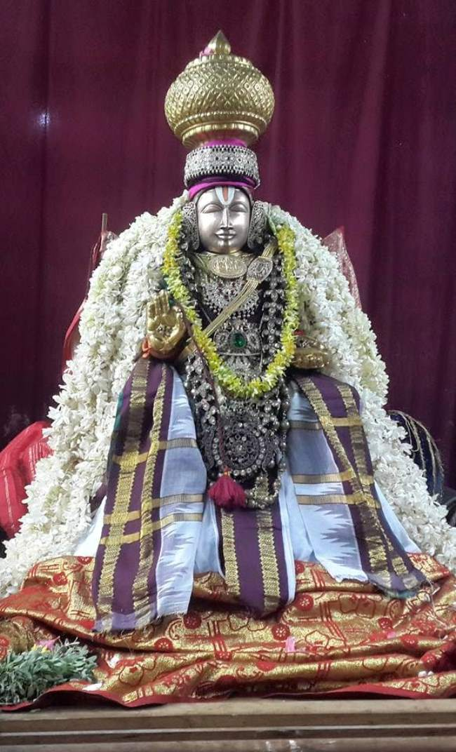 thoopul-swami-desikan-evening-purappadu-day-2-2016010