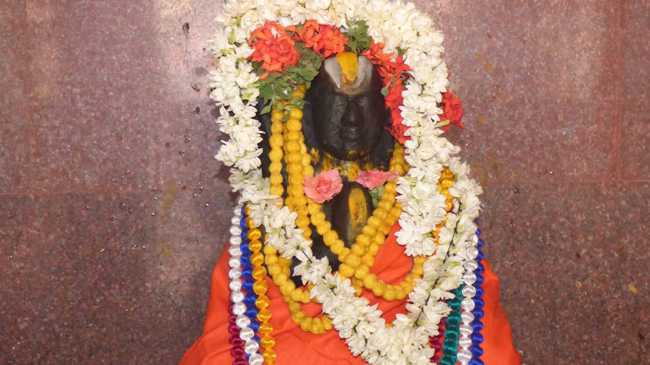 thillaisthanam_swamin_145th_thirunakshtram_05