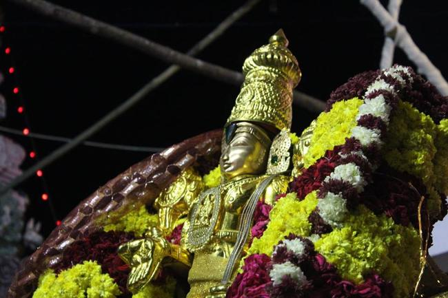 pondicherry-sri-srinivasa-perumal7