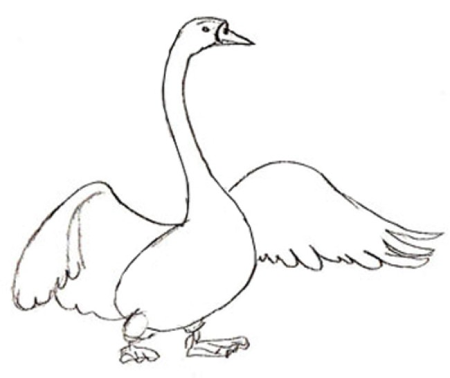 Values Of Life – Old Swan's Advice